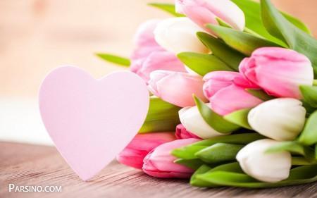 عکس پروفایل گل لاله , عکس پروفایل گل زیبا