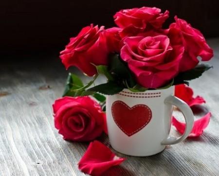 عکس پروفایل گل رز قرمز , عکس پروفایل گل زیبا با فنجان