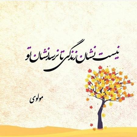 شعرهای مولوی , شعرهای مولوی درباره انسان , شعرهای مولوی درباره عشق