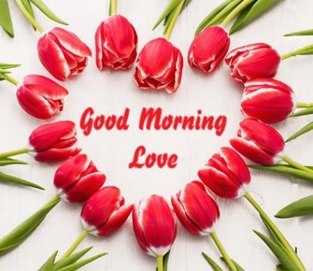 متن صبح بخیر دوستانه , صبح بخیر دوستانه , متن برای صبح بخیر