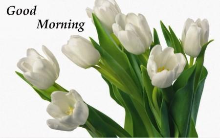 متن صبح بخیر زمستانی , متن زیبا برای صبح بخیر زمستانی , اس ام اس صبح بخیر زمستانی