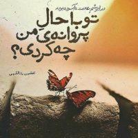 زیباترین اشعار و ترانه های افشین یداللهی