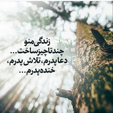 جمله های زیبا برای تبریک روز پدر ,جملات تبریک روز پدر ,جمله های عاشقانه تبریک روز پدر