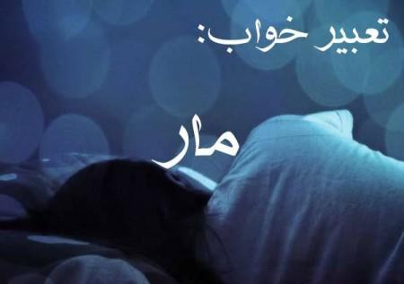 دیدن مار در خواب , تعبیر دیدن مار در خواب , مار در خواب تعبیر