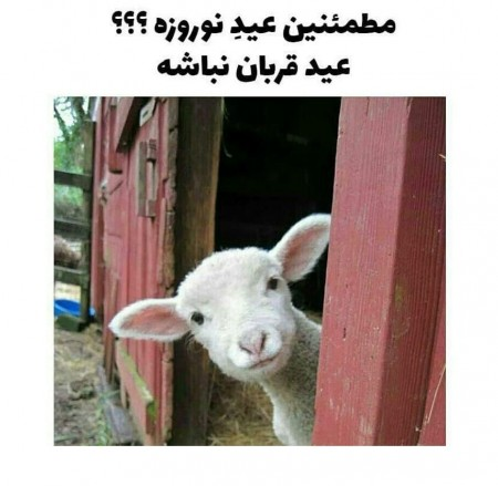 عکس خنده دار عید نوروز