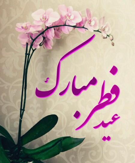 عکس عید فط