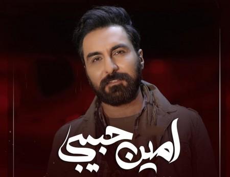 بیوگرافی امین حبیبی
